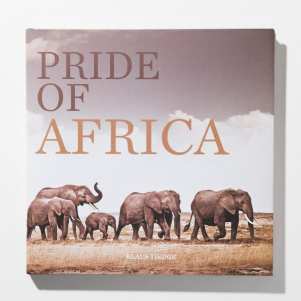 Coffee table book African wildlife Pride of Africa by Klaus Tiedge