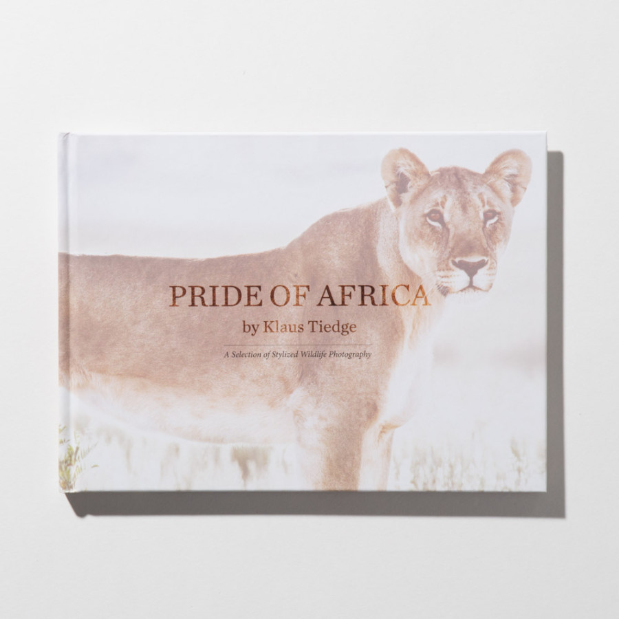 Small Pride of Africa book lion cover by Klaus Tiedge