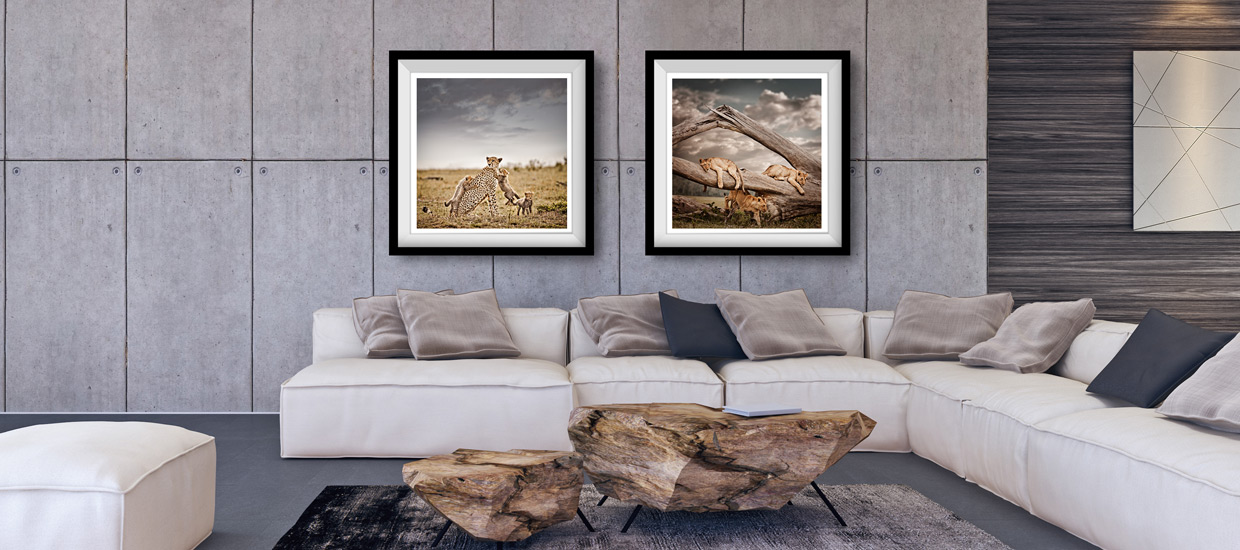 Limited-Edition-Fine-Art-Photography
