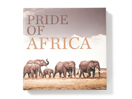Pride-of-Africa-large-book-elephant-cover-460x348