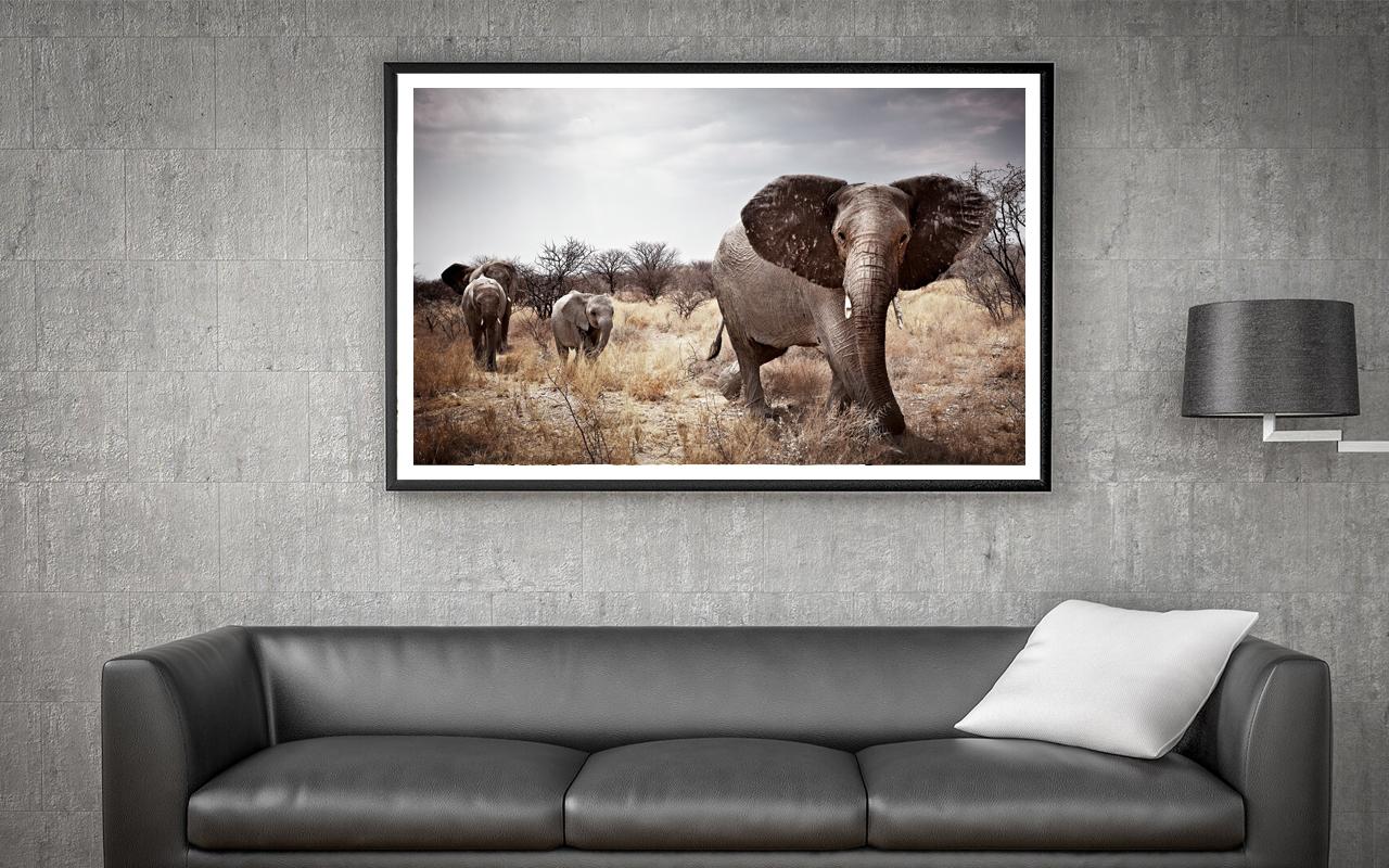 Slider-Elephant