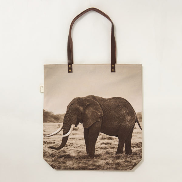 TBAG-W02© AfricanFineArt.co.za
