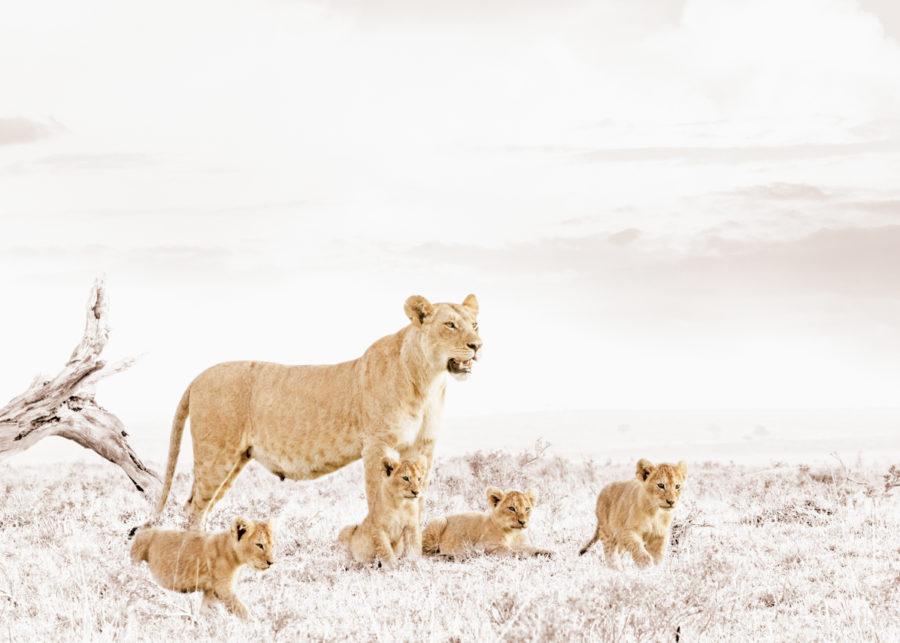 W33_White_Lioness&Cub© Klaus Tiedge