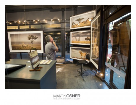 exhibition-3